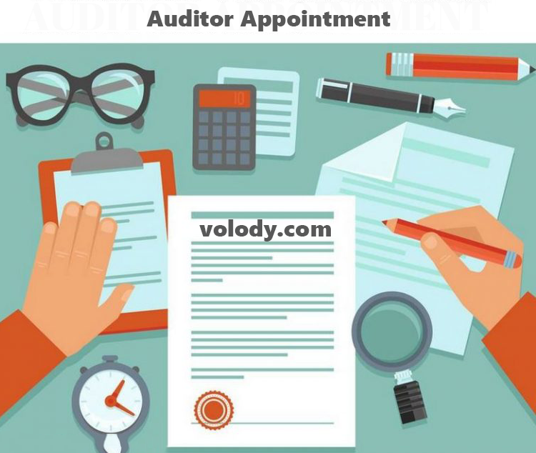 Auditor Appointment And Compliance